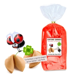 Paquet de 30 fortune cookies : CITATIONS ET MOTS D'ESPRIT