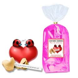 Paquet de 30 Biscuits : LOVE & MOTS DOUX