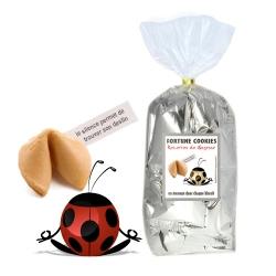 Paquet de 30 Biscuits fortune cookies : RECETTES DE SAGESSE